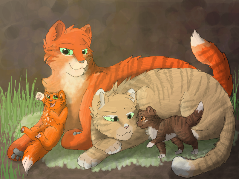 The gallery for --> Cinderpelt And Firestar Kits