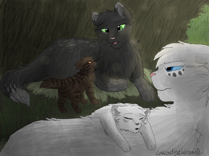 When Did Warrior Cats Come Out