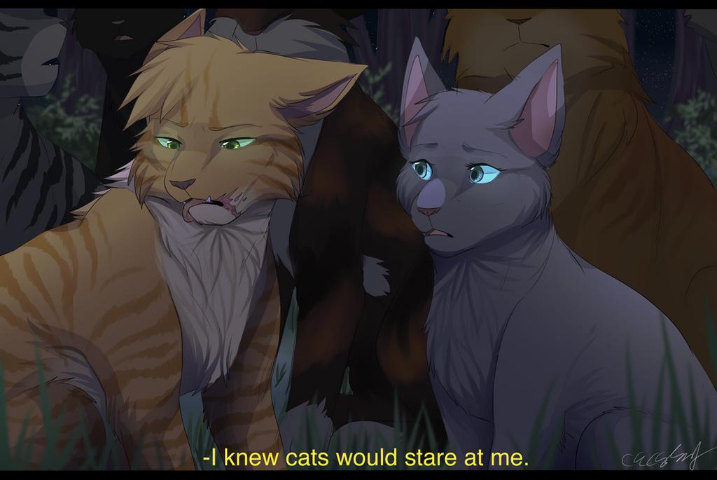 Warrior Cat Scenes To Draw Mizu No Akai