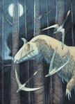 Long Jurassic Nights, ver. 2