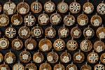 bone medallions on olive tree wood  - detail 2