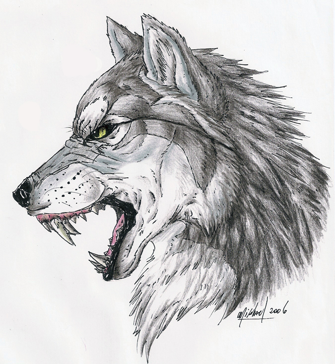 Realistic Drawings Of Wolves Growling Growl by deadhowl on D...