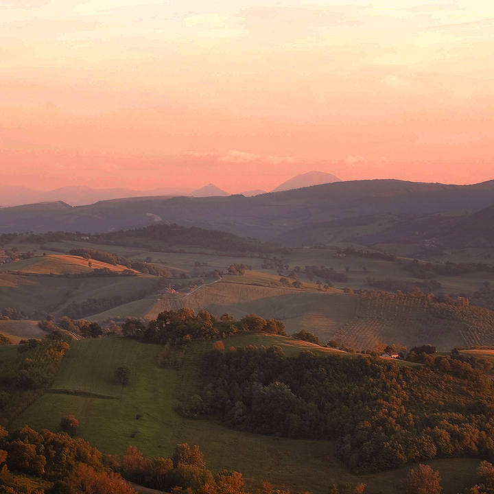 le marche by Lisa-Schneider