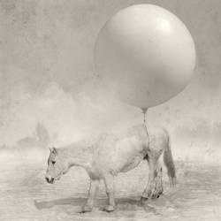 yellow circus by KonradB