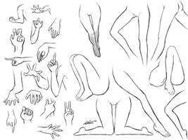 Poses of Arms n Legs