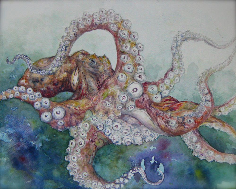Octopus by Fossil-Amber