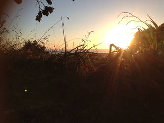 late summer sunrise by HawkTnz
