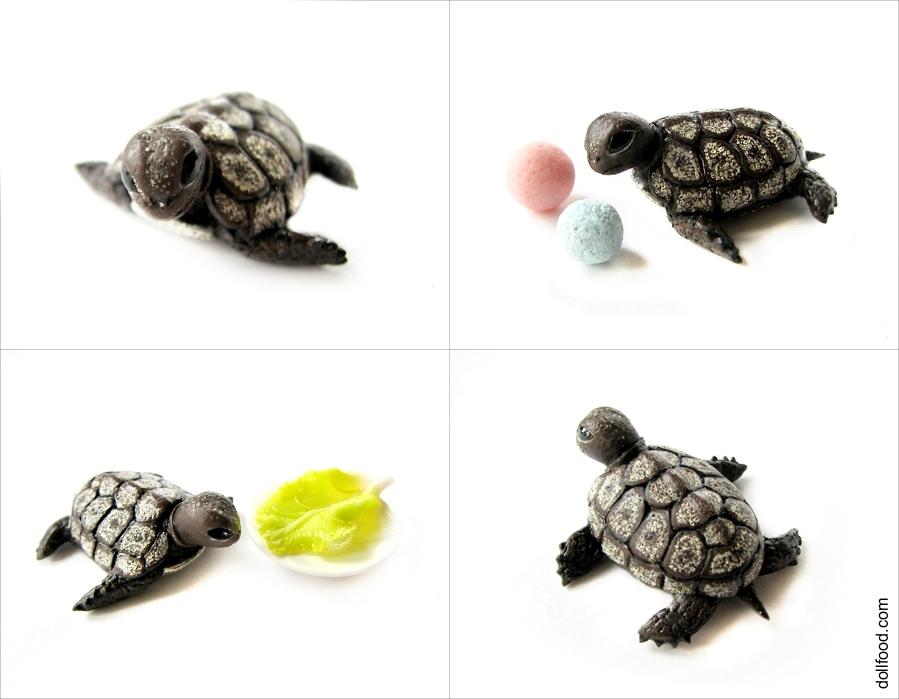 Turtle by allim-lip