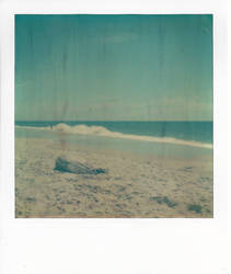 Driftwood Polaroid by platinumblonde