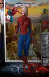 Spider-Girl 'Teenage Bedroom Heroines' Series