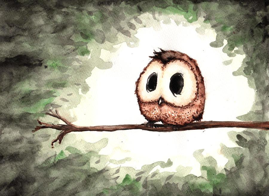 Dear little owl, by blackIndy on DeviantArt