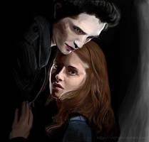 Twilight by irrr