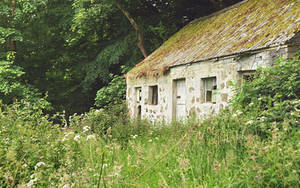 Irish Cottage UPDATED