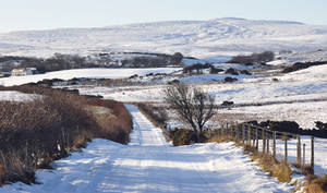 Ireland in Winter by younghappy