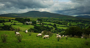 Glenelly Valley, Sperrins by younghappy