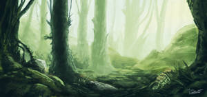 Environment  : Forest