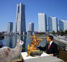 Obama and a Llama in Yokohama by junuxx