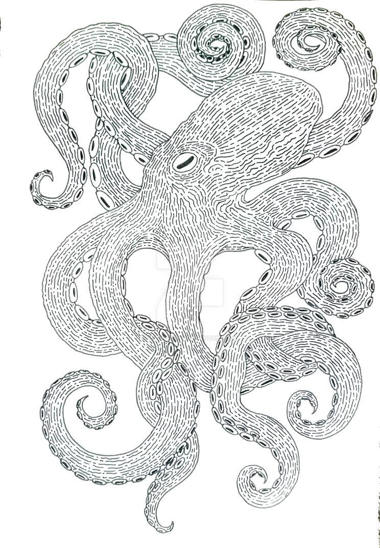 Octopus by 1nfinite-1ne