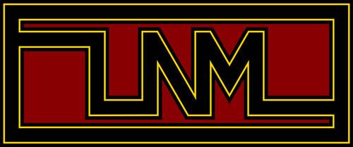LNM Fancy Logo