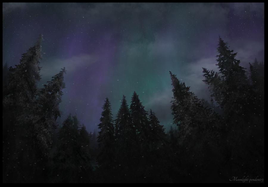 Winter Night by Moonlight-pendent13
