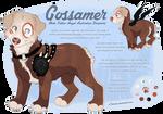 OC: Gossamer