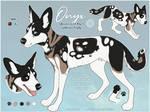 YCH F: African Wild Dog Ref Sheet