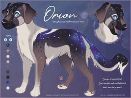 OC FLATSALE: Orion by c-Chimera