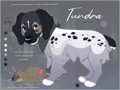 OC FLATSALE: Tundra