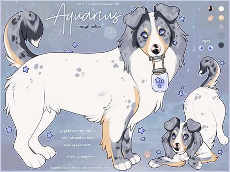 OC FLATSALE: Aquarius