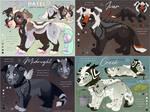 OCS: Ailidae Pup Batch