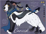 Ailidae Auction: Corvid