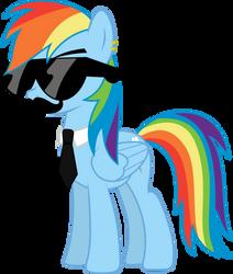 Mane Six Got Swag: Rainbow Dash