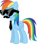 Mane Six Got Swag: Rainbow Dash