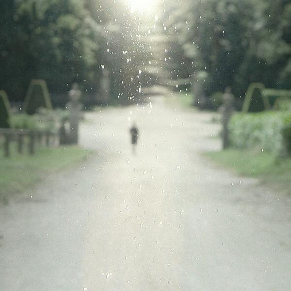 Garden of my dreams by tuminka