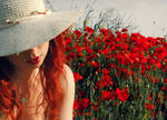 poppy by ilkeruzunalan