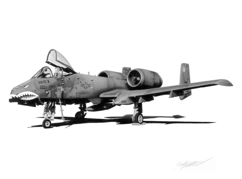 A 10 Thunderbolt Drawing A-10A Thunderbo...