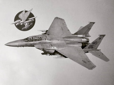F-15E Strike Eagle 389th FS Commission