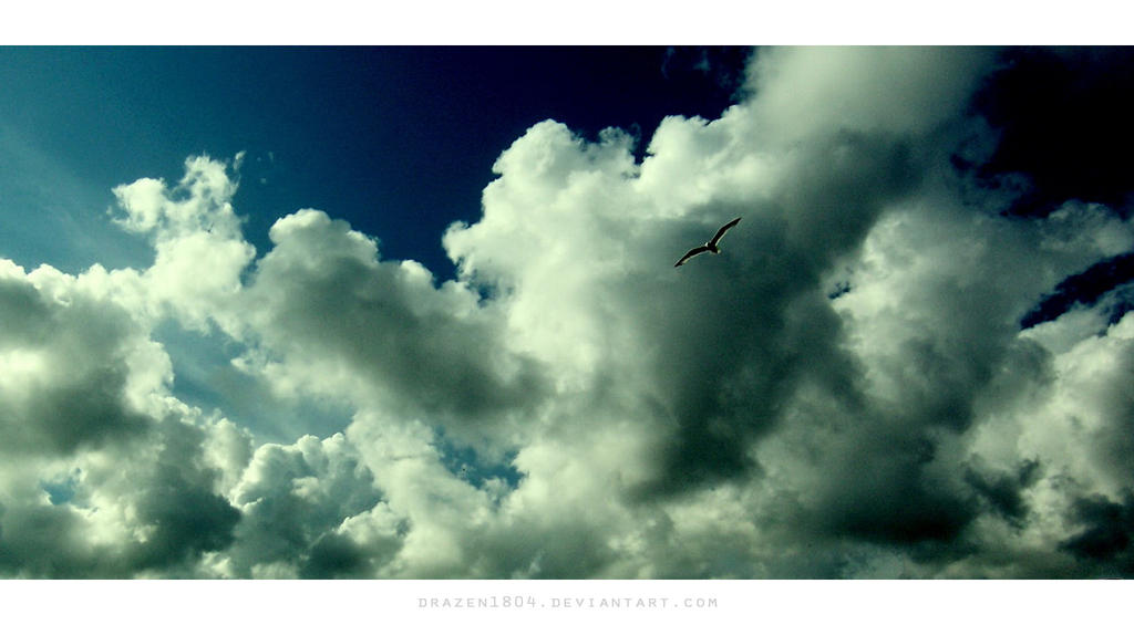Freedom by Drazen1804