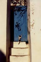 Tunisia 4 19... by Kitsch1984