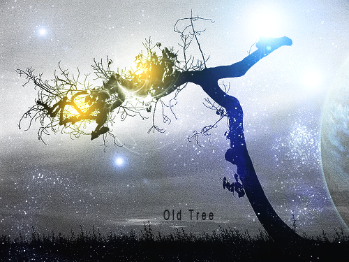 Primer Rank Old_tree_by_legotheonly-d3kup49