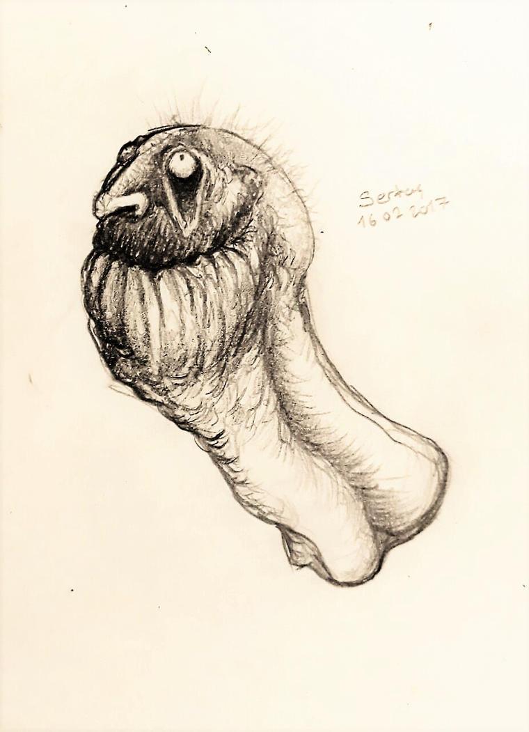 Creature Head #2 by KrulesKR