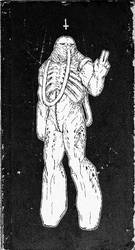 Tapeworm Astronaut