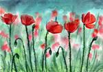 66 - Poppies by Rikkimaru129