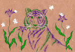 77 - Tiger