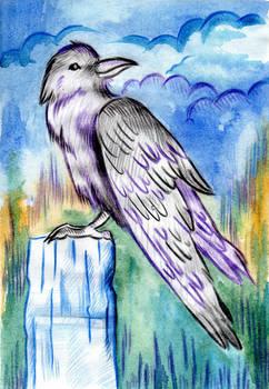 188 - Raven