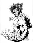 Wolverine Inks