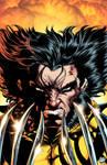 Wolverine headshot Colors