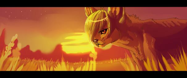 Sun by arucarrd