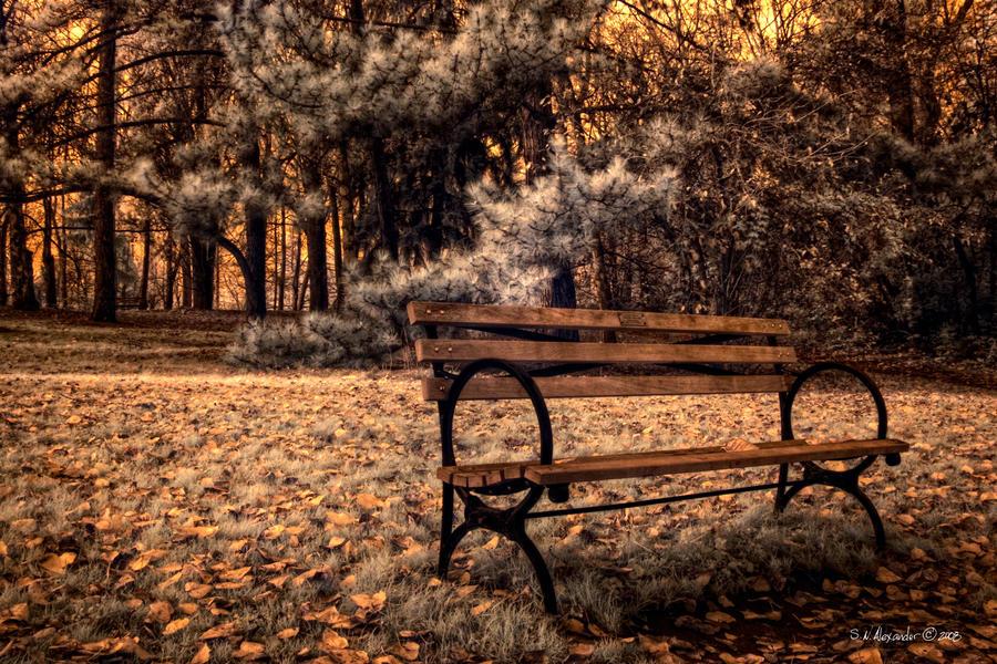 Dreams in Fall by UrbanRural-Photo