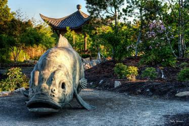 Dragon Seeker by UrbanRural-Photo